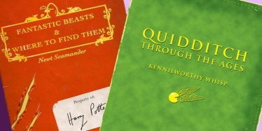 quidditch-through-the-ages-fantastic-beasts